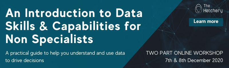 An Introduction to Data Skills & Capabilities for Non Specialists